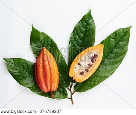Sliced Cacao Pod On Green Leafs Isolated On White Background