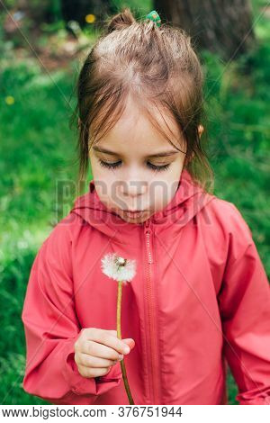 Cute Little Toddler Caucasian Girl In Pink Jacket Blowing On A Dandelion In Her Hands Over Natural G