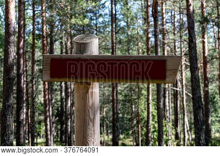 Wooden Direction Sign Mock Up. Wooden Direction Sign In A Forest.  Mock Up Billboard. Mock Up Poster