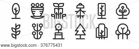 Set Of 12 Thin Outline Icons Such As Tree, Pine Tree, Stem, Dwarf, Forest, Flower Pot For Web, Mobil
