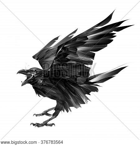 Drawn Bird Crow On A White Background With An Open Beak