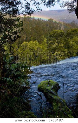 Rapids In Tasmania After Rain