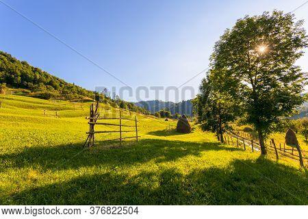 Beautiful Rural Landscape In Summer Light.transilvania, Romania