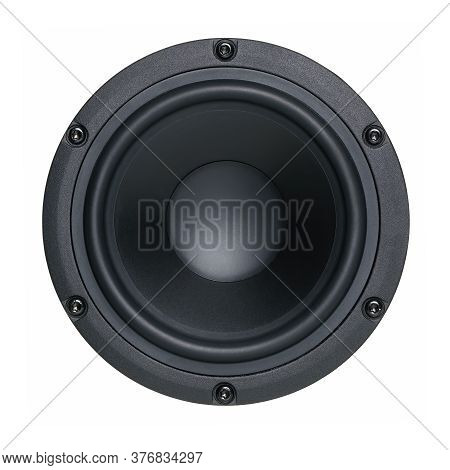 A Black Bass Speaker Membrane, Single Object