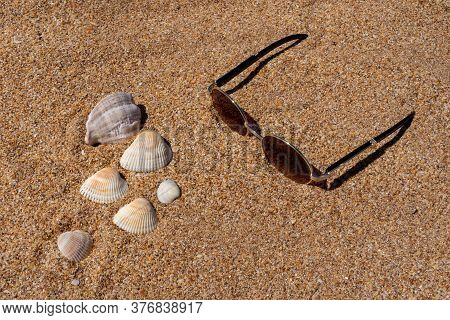 Seashell And Sunglasses On Yellow Seashell Sand