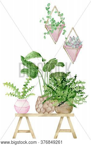 Watercolor Illustration Of Home Decoration With Potted Plants On The Indoor Potting Wooden Bench. Ha