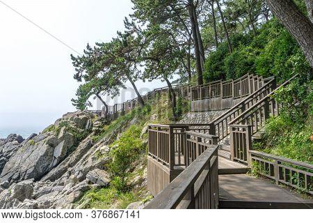The Wooden Walk Way Over The Rock Cilff In Haeundae Dongbaekseom Island Near Haehundae Beach.