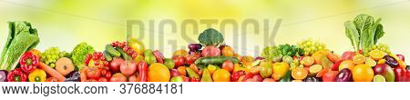 Panoramic photo fruits and vegetables on green natural blurred background. Free space for text.