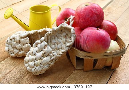 Decorative Sandals Made Of Bark And Red Apples