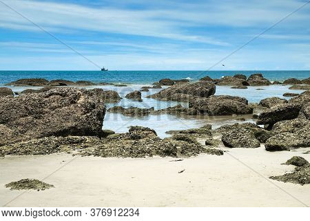 Scenic Ocean View To Wild Deserted Rocky Beach After Low Tide With Many Outgrowth Fouling Colonies O