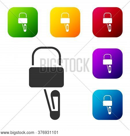 Black Lockpicks Or Lock Picks For Lock Picking Icon Isolated On White Background. Set Icons In Color
