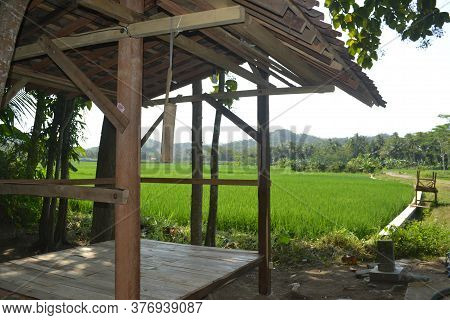 Wooden Building With Wooden Planks To Sit Next To A Large Paddy Field With Rice Plants Still Green