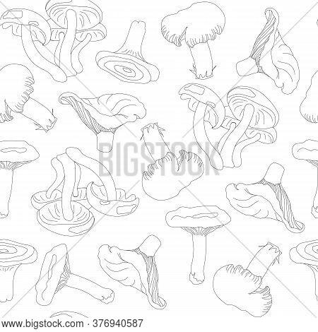 Black And White Pattern From Forest Bends. Seamless Pattern From Contour Mushrooms On A White Backgr
