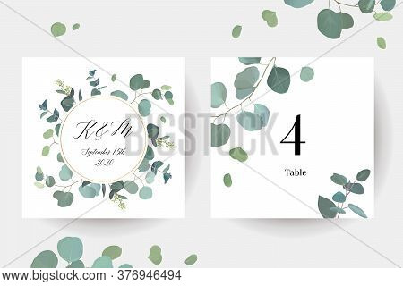 Herbal Eucalyptus Selection Vector Frames. Hand Painted Branches, Leaves On White Background. Greene