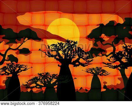 Sunset With Landscape Of Baobab Trees. Forest Of Boab Or Baobab Tree Background. African Wax Print F