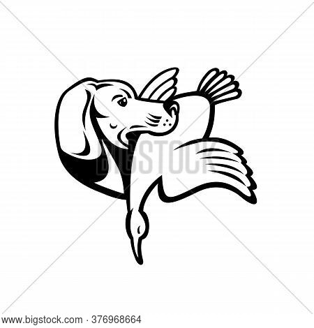 Illustration Of A Golden Retriever Dog With Duck Or Goose Viewed From Side Done In Retro Black And W