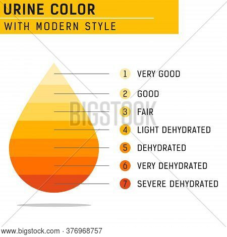 Urine Color Vector Illustration Isolated On White Background. Vector For All Project, Web Design And