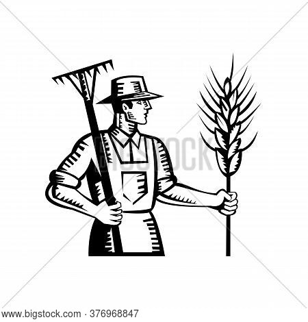 Illustration Of A Wheat Farmer Worker Holding A Rake And Cereal Grain Stalk Viewed From Side Done In