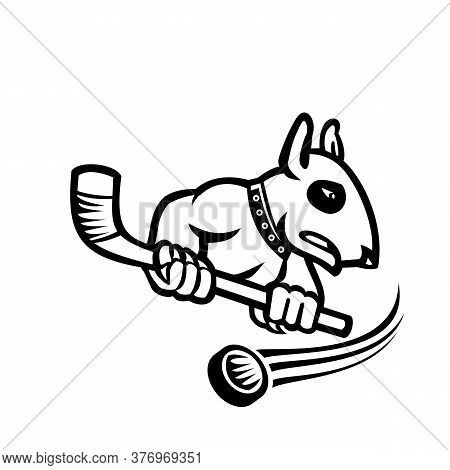 Sports Mascot Black And White Illustration Of A Bull Terrier Or Wedge Head Holding An Ice Hockey Sti