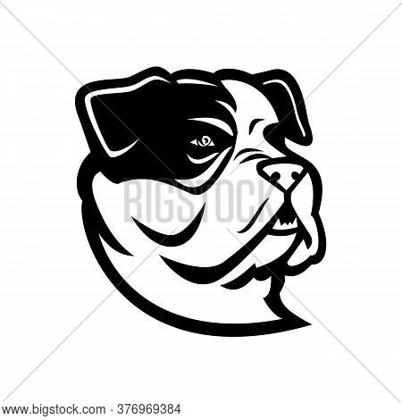 Mascot Black And White Illustration Of Head Of A Bully Type American Bulldog, A Breed Of Utility Dog