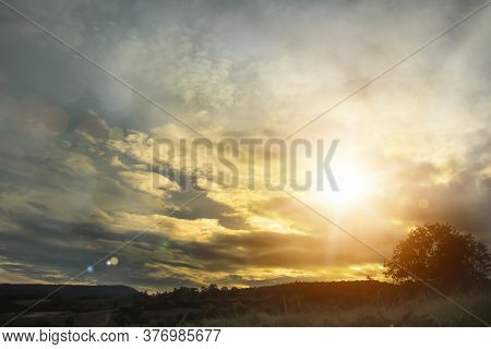 Natural Background Blurring Warm Colors And Bright Sunlight. Bokeh Or Tree Background Green Energy A