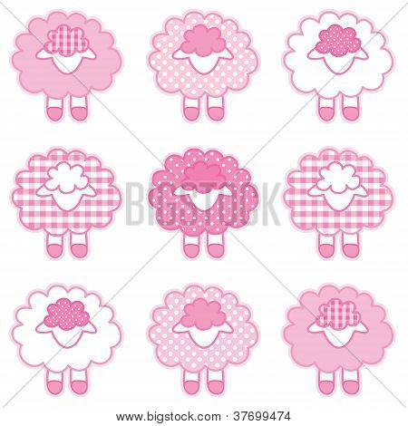 Baby Lambs, Patchwork Gingham and Polka Dots, Pastel Pink