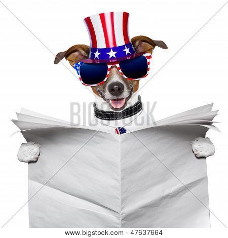 american dog reading a big blank newspaper poster