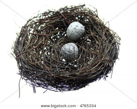 Two Eggs In Nest