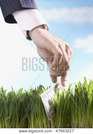 Closeup of a businessman picking up fifty dollar bill from grass against the sky