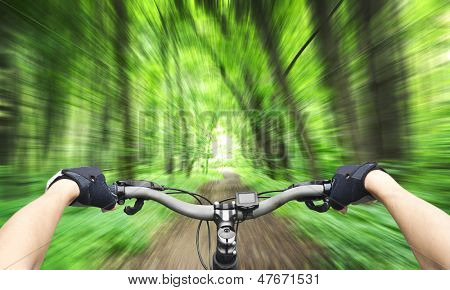 Mountain biking down hill descending fast. View from bikers eyes. Motion blurred poster