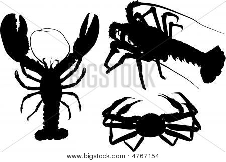 Silhouettes Of Crawfish And Crab
