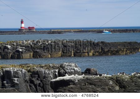 The red lighthouse of the farne Islands UK with cruise boat poster