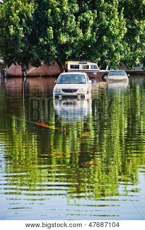 Jaransanitwong Road During The Worst Flooding