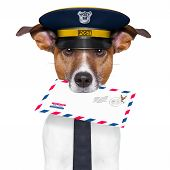 postman mail dog with a air mail letter poster
