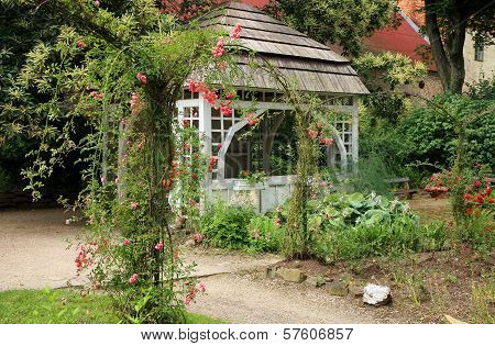 gazebo in the garden with climbing roses