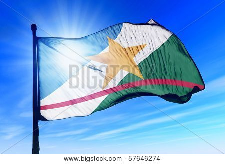 Roraima (Brazil) flag waving on the wind