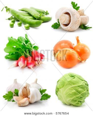 Set Of Fresh Vegetables With Green Leaf