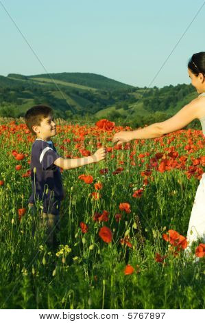 Boy Offering Poppy Flowers