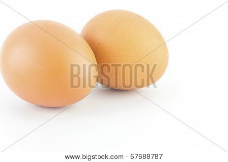 Two brown eggs isolated on white background. poster