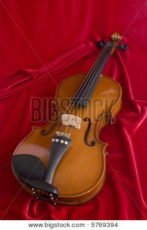 Violin on the red texture