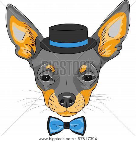 Vector Cartoon Hipster Dog Chihuahua Breed