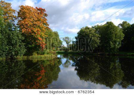 Autumn Trees Near The Mirror Lake
