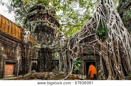 Buddhist Monk At Angkor Wat. Ancient Khmer Architecture, Ta Prohm Temple Ruins Hidden In Jungles