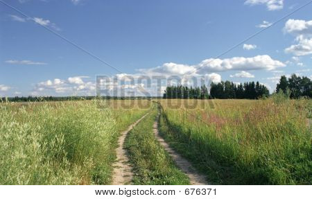 Road To A Field