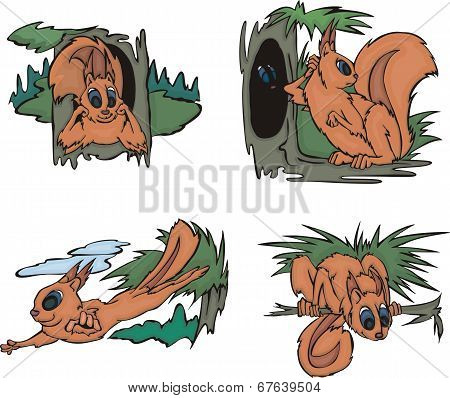Playful comic squirrels in forest. Set of vector illustrations. poster