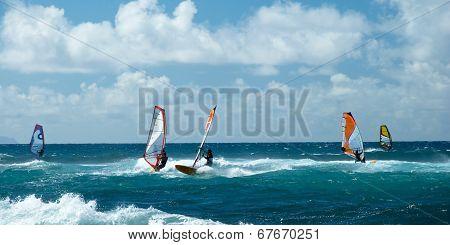 Windsurfers In Windy Weather On Maui Island Panorama