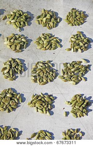 Cardamom, Elaichi, Zingiberaceae Spice For Sale At Market