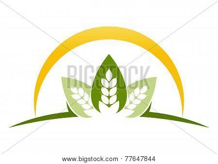 leaf farm land abstract logo