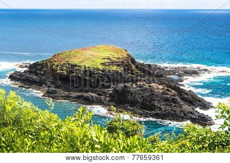 Mokuaeae Islet in Kilauea Point, Hawaii