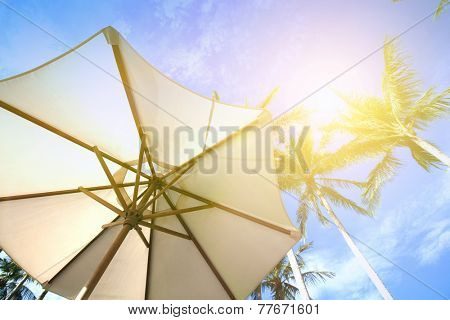 Sun parasol under coconut trees against blue sky on a very hot day.